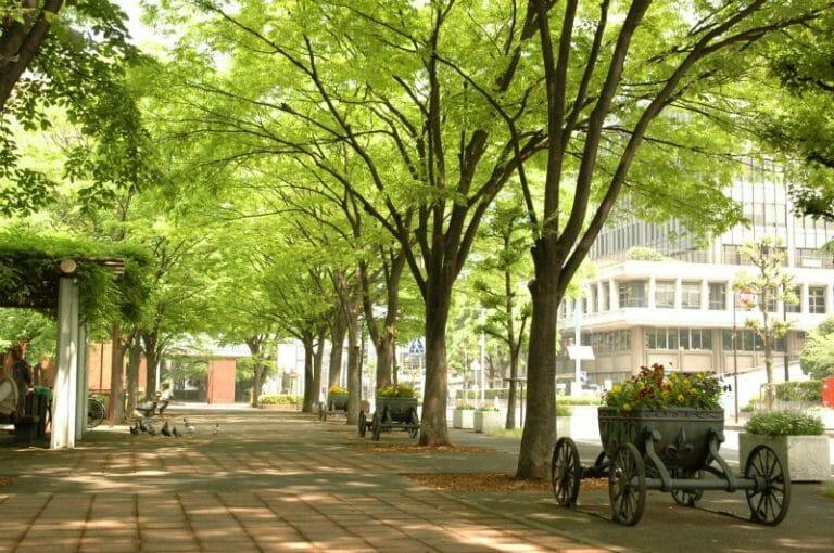 戸田で評判のリフォーム会社や戸田市の補助金制度を紹介!