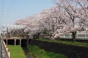 吉川で評判のリフォーム会社や吉川市の補助金制度を紹介!