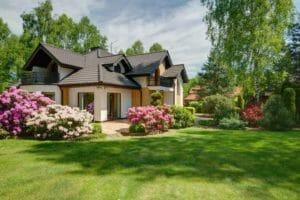 庭リフォームにおすすめで人気な芝生の種類は?