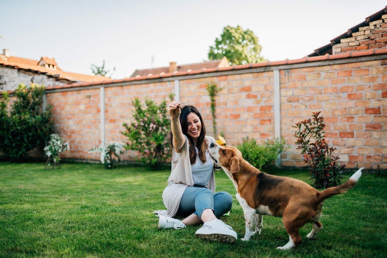 愛犬のための庭造りの費用・価格は?