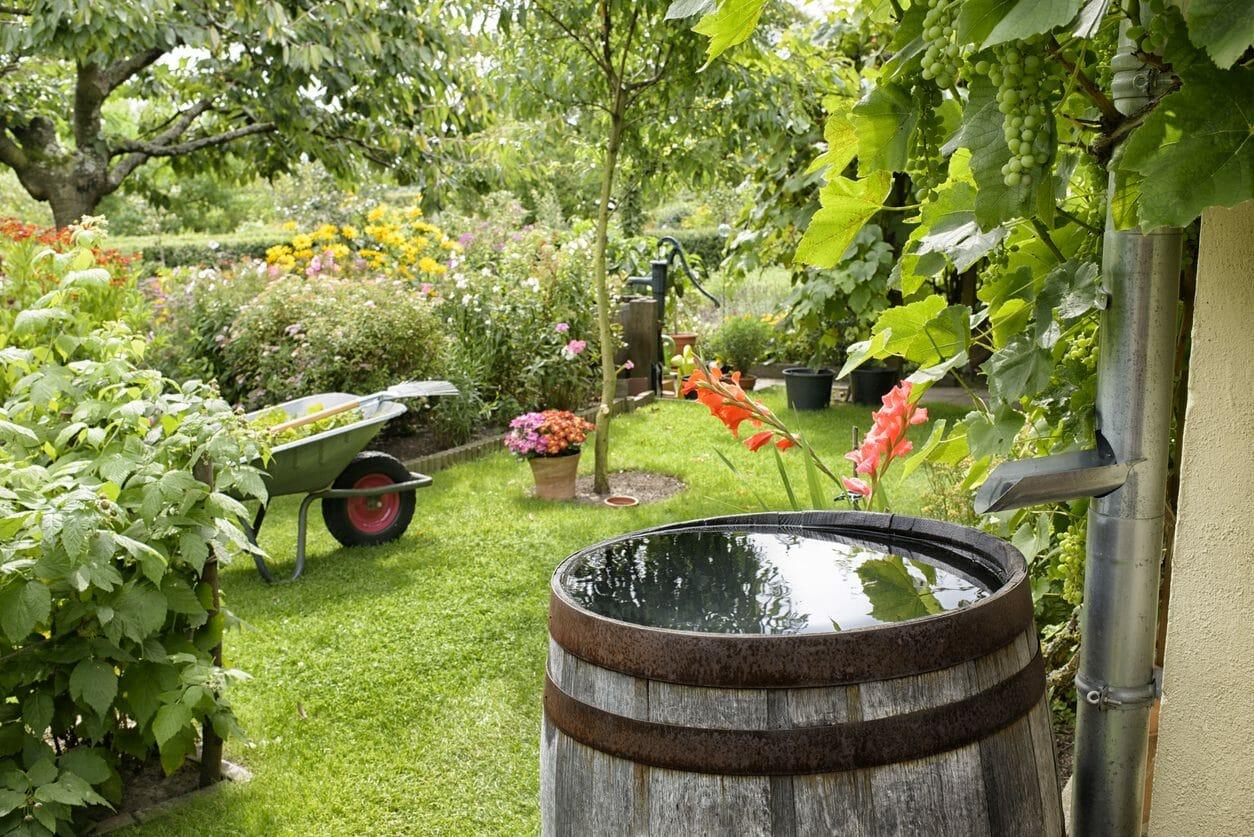家庭菜園ができる庭へのリフォーム費用は?