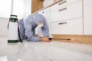 シロアリから家を守るための対策方法教えます!