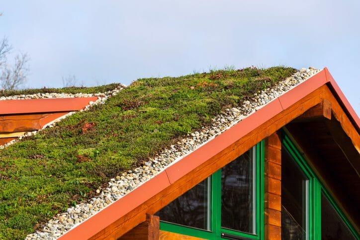 屋根に庭?草屋根にリフォームするメリット・デメリットを紹介します!