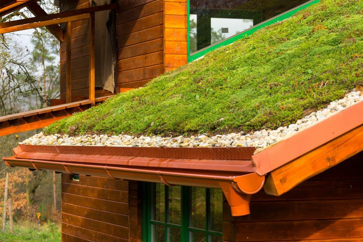 屋根に庭?草屋根にリフォームする費用をご紹介します!