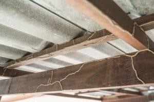 床下換気扇のシロアリへの効果や取り付ける際の注意点を解説!