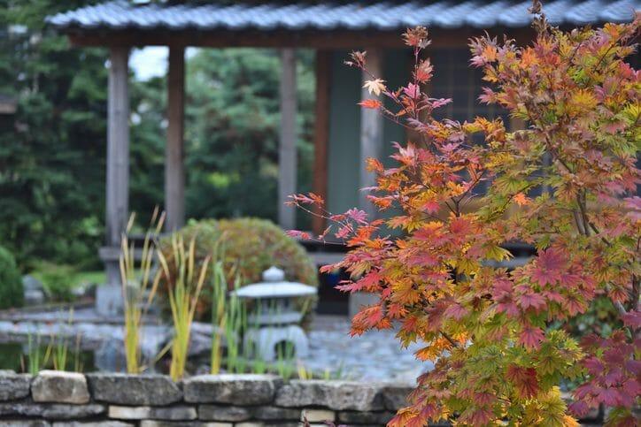和風から洋風な庭、もしくは和風な庭にリフォームする際のポイントや費用を解説!