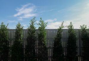 外 構 フェンス の 色