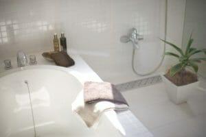 風呂 シロアリ