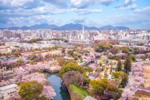 姫路市で評判のリフォーム会社や補助金一覧