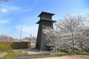 江戸川区で評判のリフォーム会社や補助金一覧