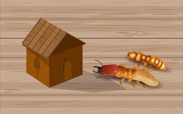 高気密の住宅に虫?侵入経路と対策